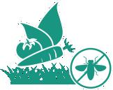 plagas-cultivos-areas-verdes2