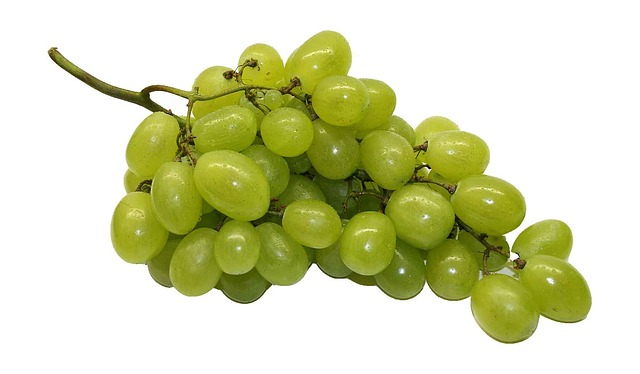 table-grapes-74344_640
